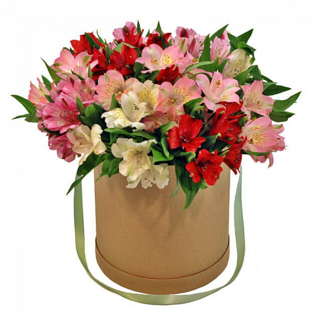 Bouquet number 271