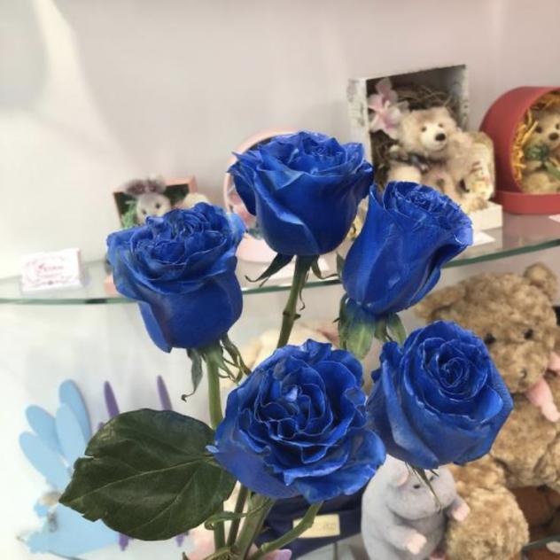 5 синих роз