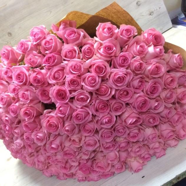 Розовый рай.