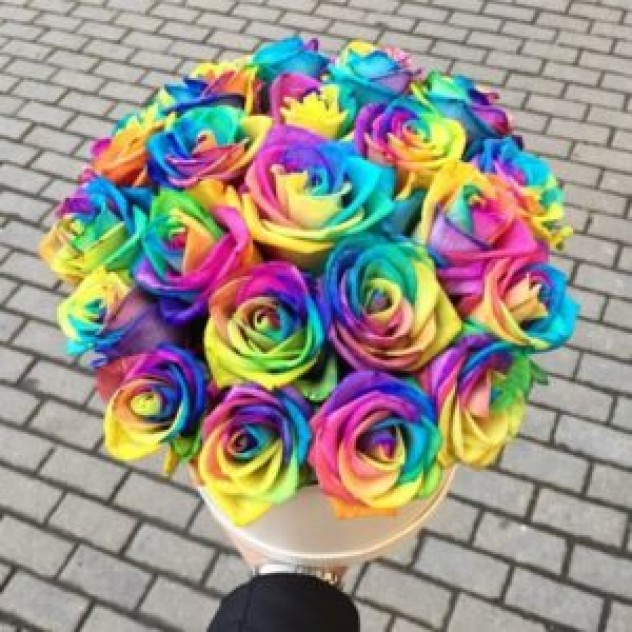Шляпная коробка из 25 радужных роз (25 см, Эквадор)