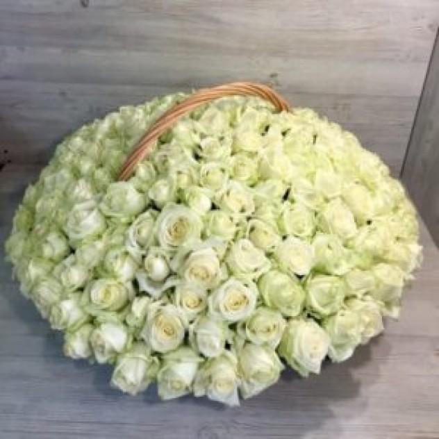 Корзина из 201 белой розы с крупным бутоном