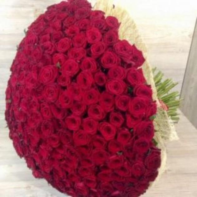 Букет из 301 крупной красной розы