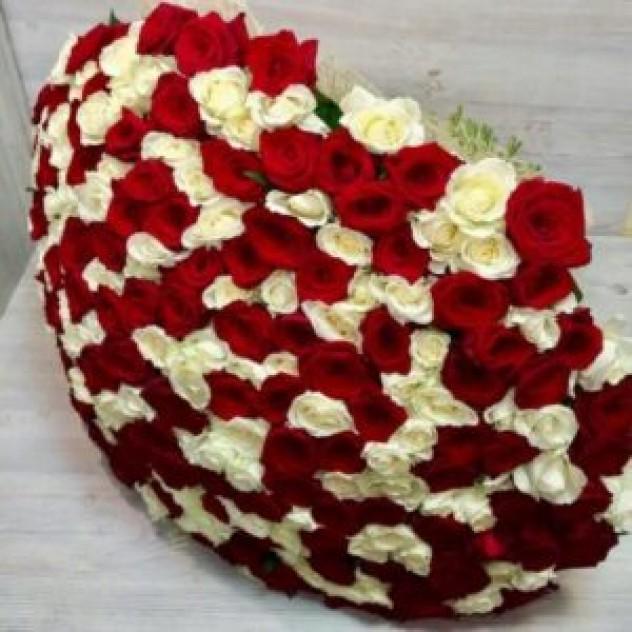 Букет из 301 крупной красно-белой розы