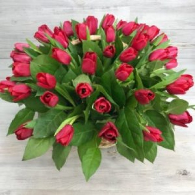 Корзина из 51 красного тюльпана (35 см)