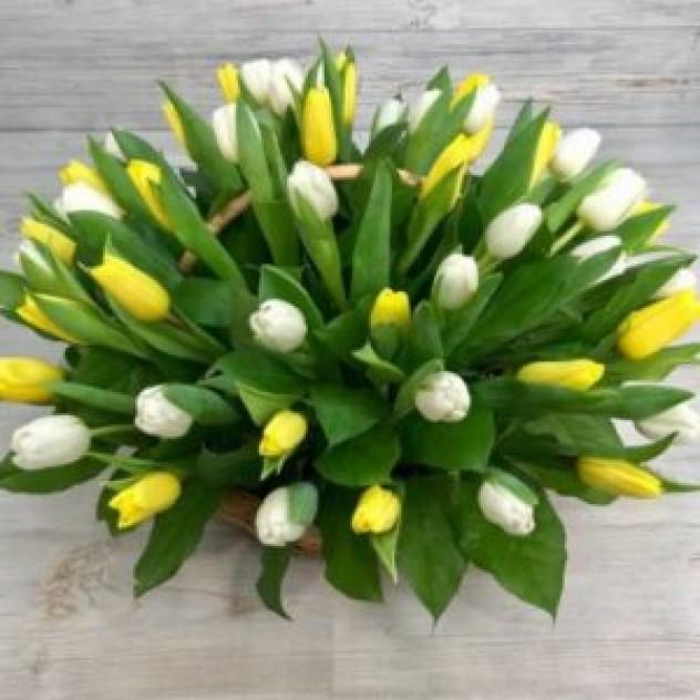 Корзина из 51 желтого тюльпана (35 см)