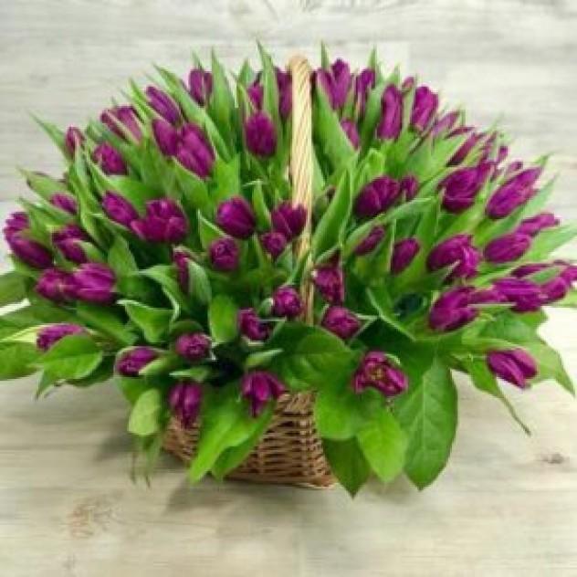 Корзина из 101 фиолетового тюльпана (35 см)