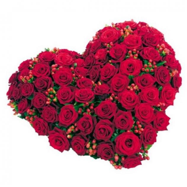 Сердце из 55 роз с гиперикум