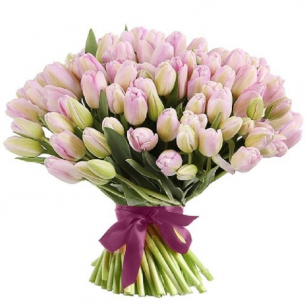 Букет из 51 тюльпана, нежно-розовый