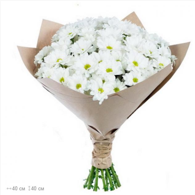 Белая хризантема в крафте