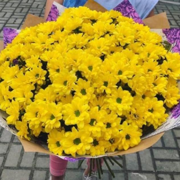 25 желтых хризантем