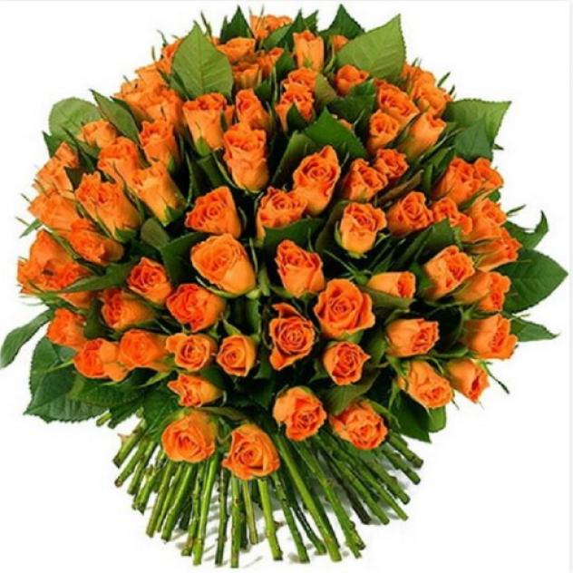 Кенийская роза 71