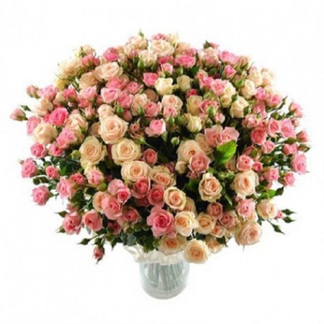 39 кустовых роз Яна и Лидия