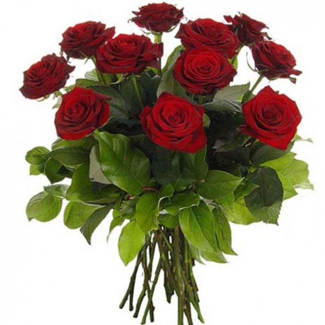 Bouquet of red roses 15 pcs.