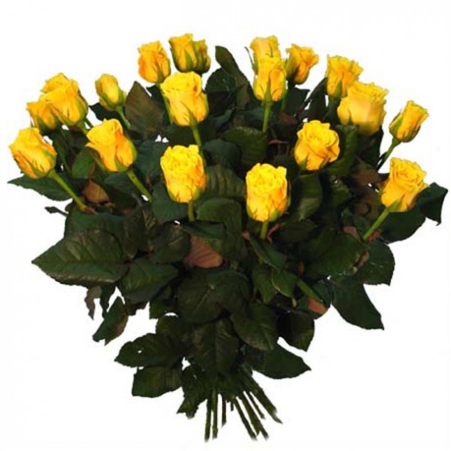 Bouquet of yellow roses 15 pcs