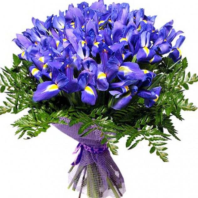 "Bouquet ""Irises"""