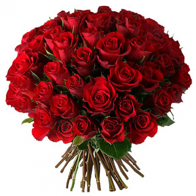 Bouquet of 51 red roses