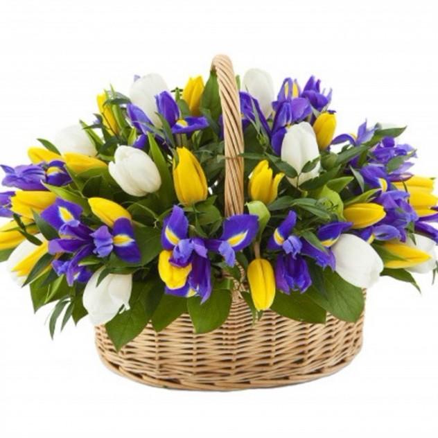 Basket with irises