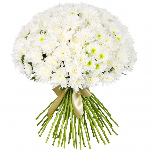 Bouquet of white chrysanthemums No. 3