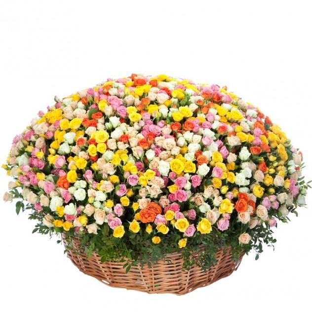 Basket of 301 spray roses