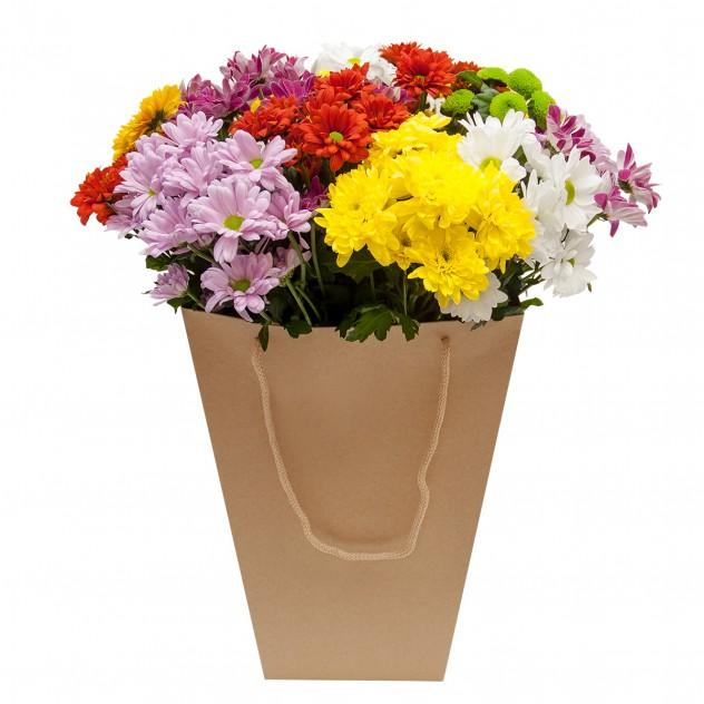 Chrysanthemum in a box