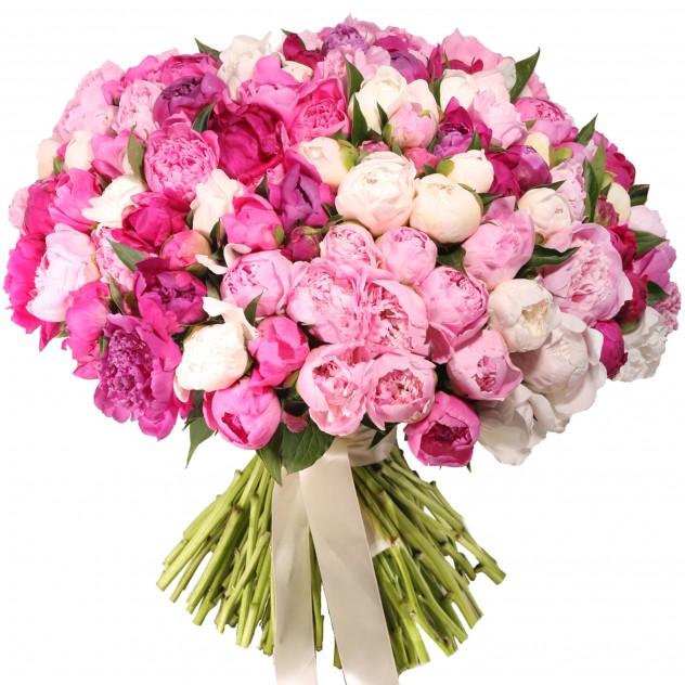 Bouquet of peonies No. 6