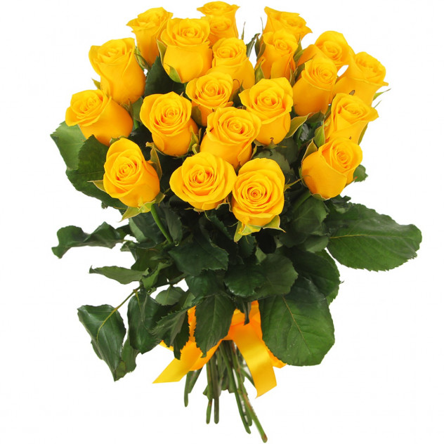 21 yellow rose