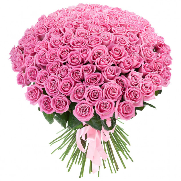 Bouquet of 101 pink roses