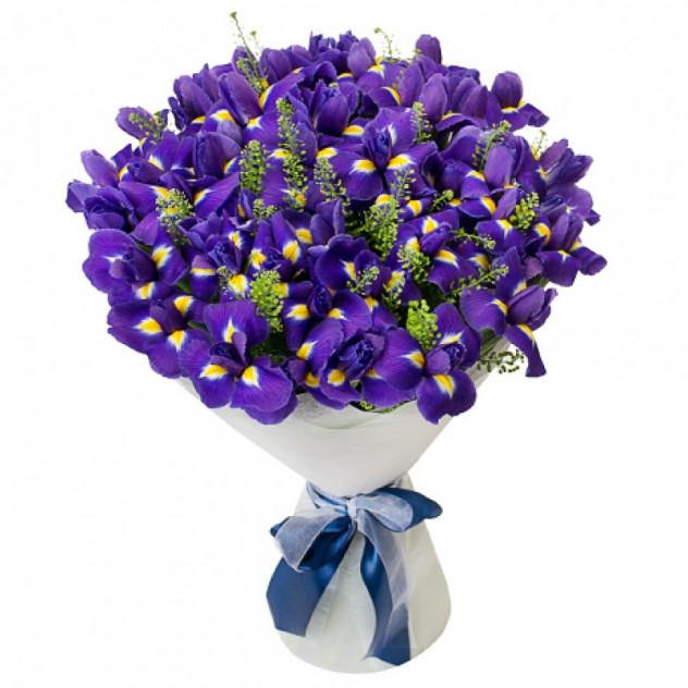 Bouquet of 51 iris № 2