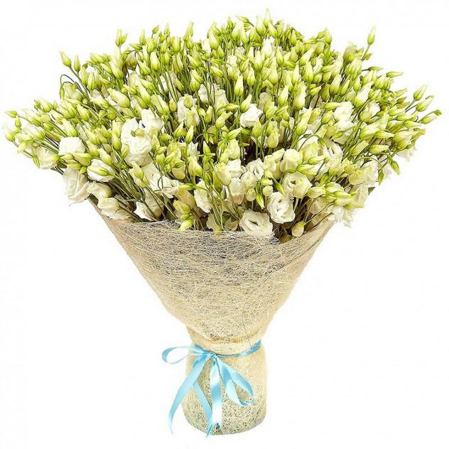Bouquet of 51 white eustomas