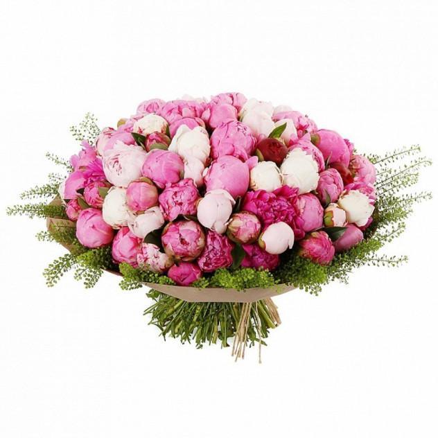 Bouquet of Xnumx Peonies