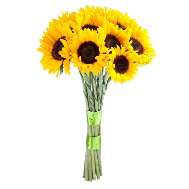Bouquet of sunflowers No. 5