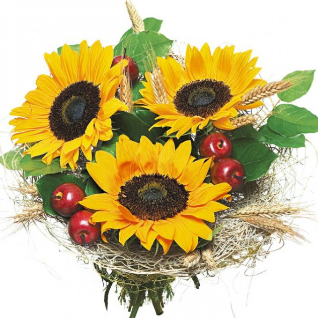 Bouquet of sunflowers No. 3