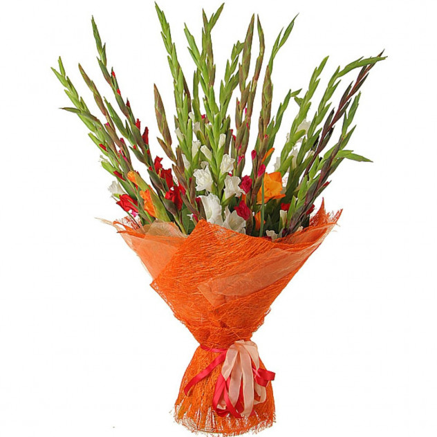 Bouquet of gladioli number 4
