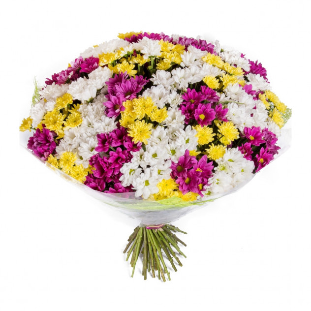 Bouquet of 35 chrysanthemums No. 2