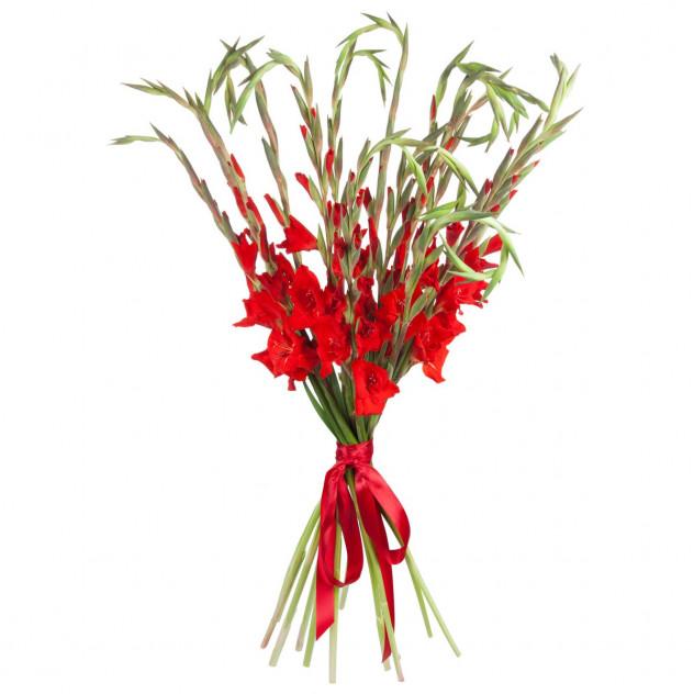 Bouquet of gladioli number 2