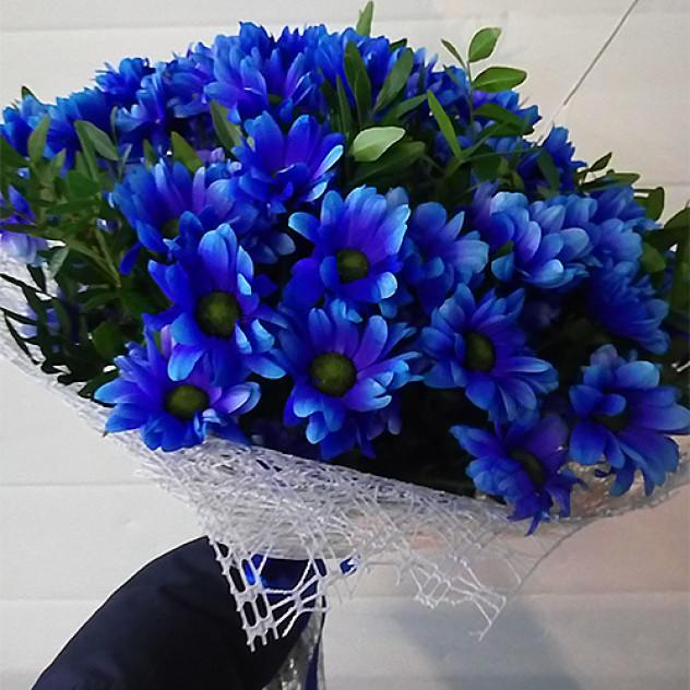 Букет 9 синих хризантем с зеленью
