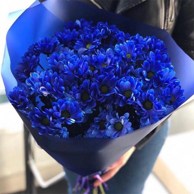 Букет 9 оригинальных синих хризантем