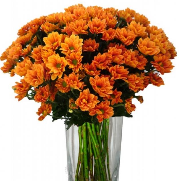 Cloudberry bouquet