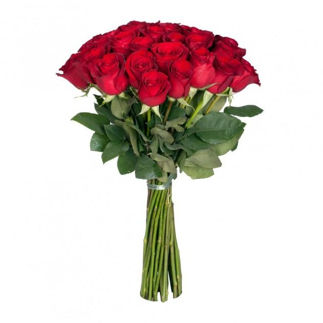 Букет из 25 элитных роз Фридом.
