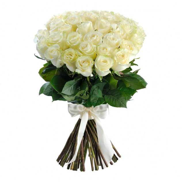Букет из 51 элитной эквадорской розы.