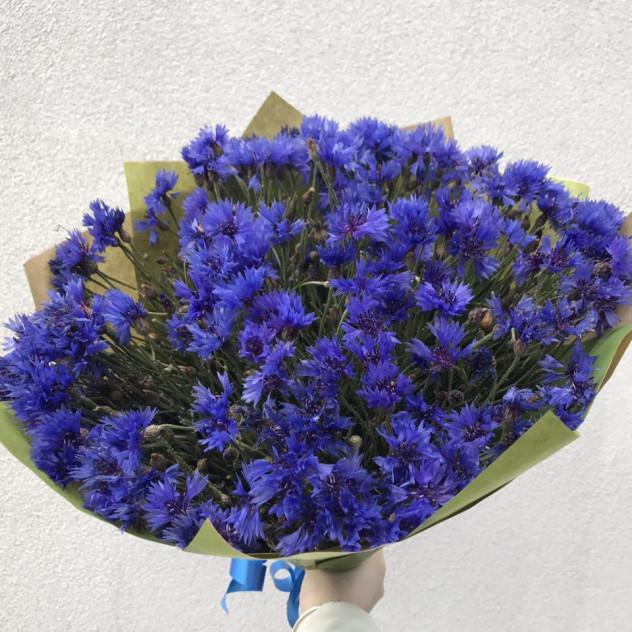 Пионы, доставка цветов по василькову