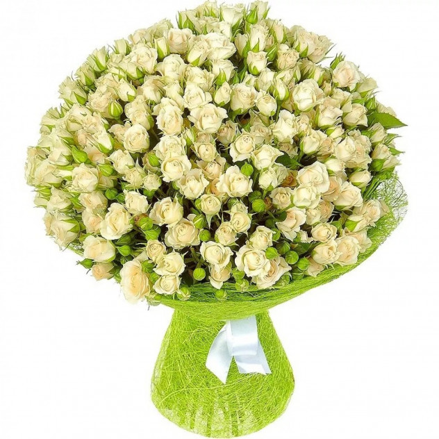 Bouquet of 51 white spray roses