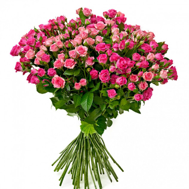 Bouquet of spray roses
