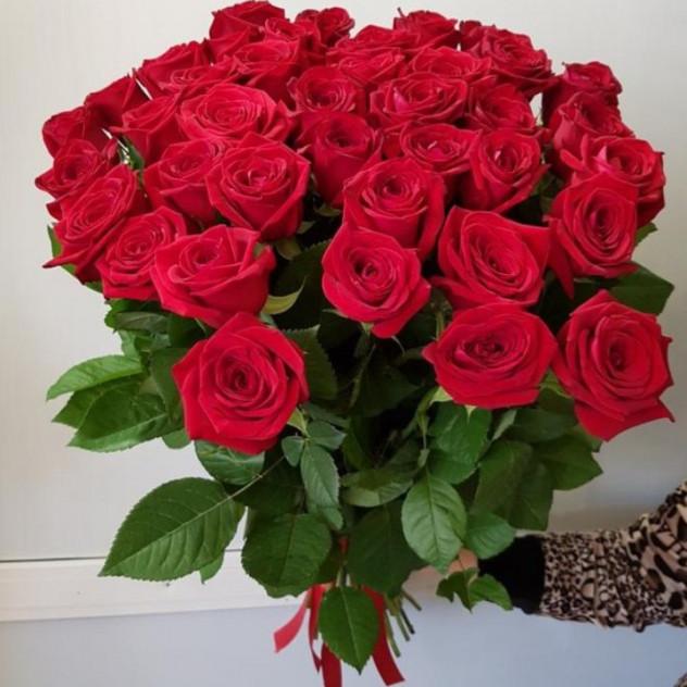 45 Scarlet Roses