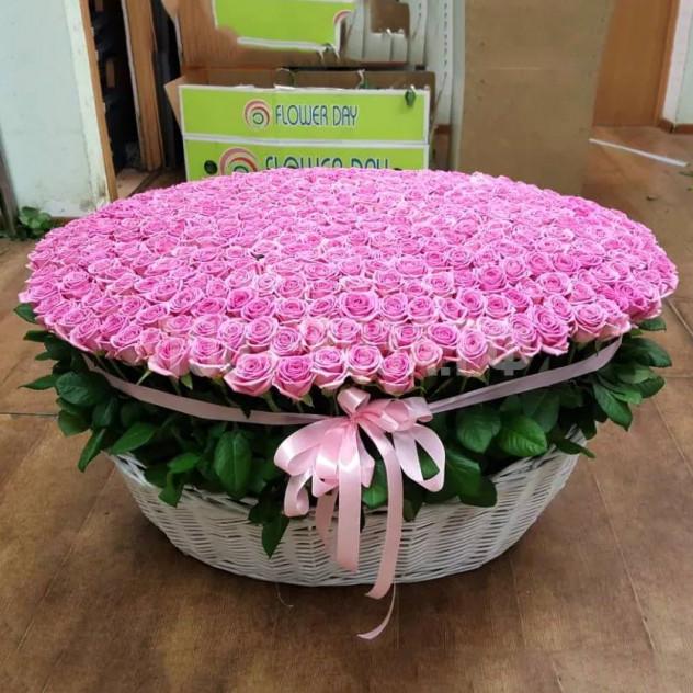 1001ピンクのバラ