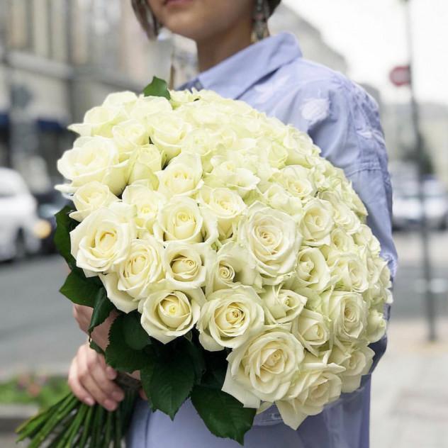 51白玫瑰